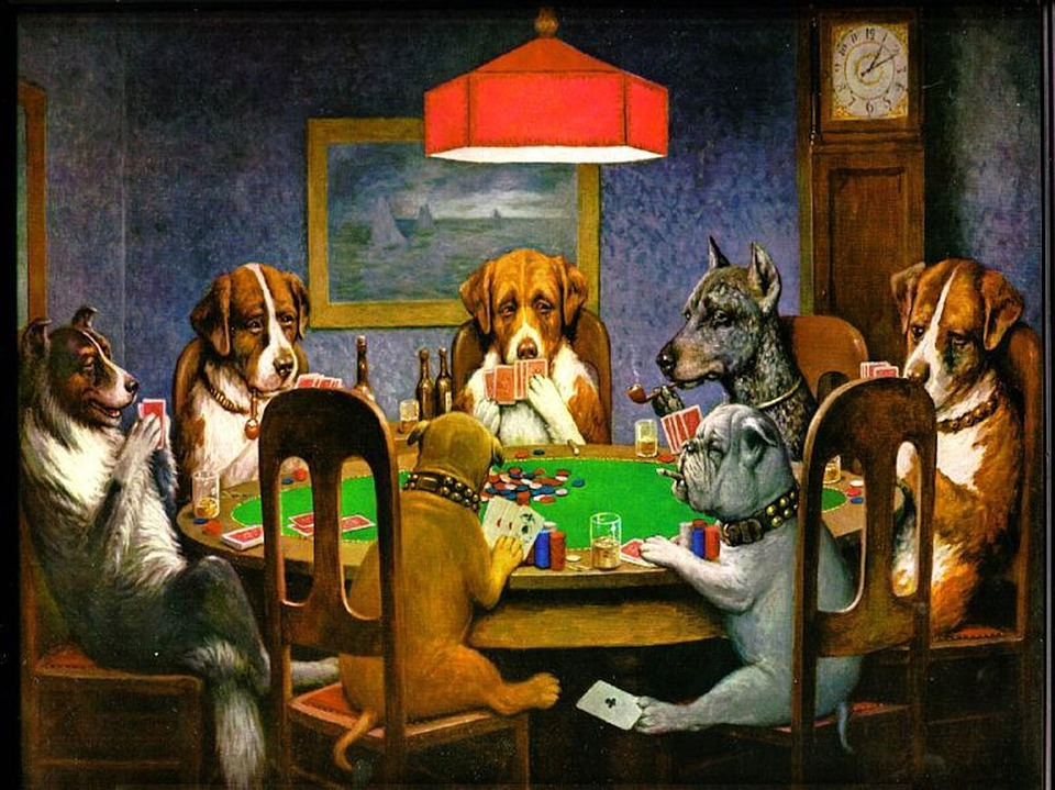 c m coolidge dogs canines poker - 3 Tips in Playing Live Poker That Will Fill Your Pocket to Brim